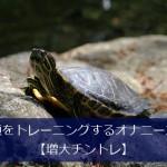 亀頭オナニー
