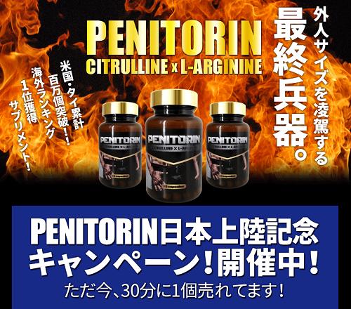 ペニトリンの公式サイトへ